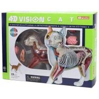 Пазл 4D Master Объемная анатомическая модель Кот рыжий табби SKL (FM-622005). 45814
