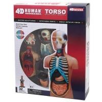 Пазл 4D Master Объемная анатомическая модель Торс человека SKL (FM-626003). 45815