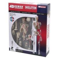 Пазл 4D Master Объемная анатомическая модель Master Скелет человека SKL  (FM-626011). 45811