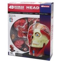 Пазл 4D Master Объемная анатомическая модель Голова человека SKL (FM-626103). 45813